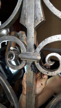 Tür-portal-sanierung (3)